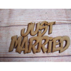 Just married Hanging Plaque