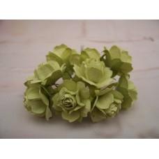 Lime green Paper Roses PK10