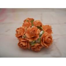 Orange Paper roses PK10