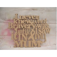 I never Knew What Bravery plaque 240mm