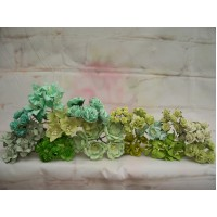 50 Mixed Green Flowers