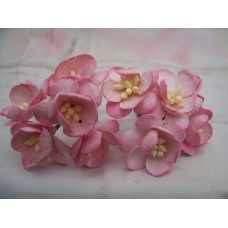 Pink Cherry Blossom Flower PK5