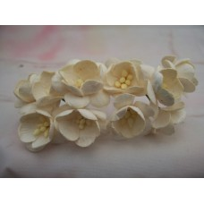 Light Cream cherry Blossom paper Flowers Pk5