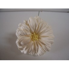 White Large daisy pack of 5