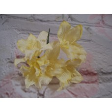 Lily Yellow Pack of 5