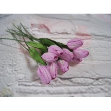 Tulips Lilac Pack Of 10
