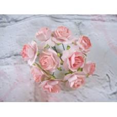 Paper Ruffle Rose two tone Peach PK 10