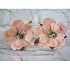 Paper Peonies Peach Pack of 5