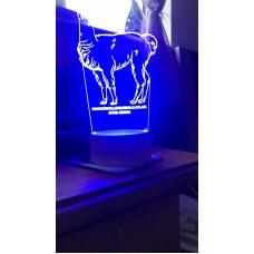 Night Light style LED lit lamps
